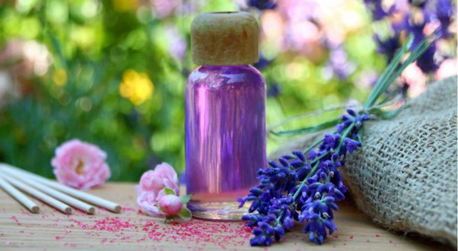 Guide d'utilisation des huiles essentielles dans le jardin