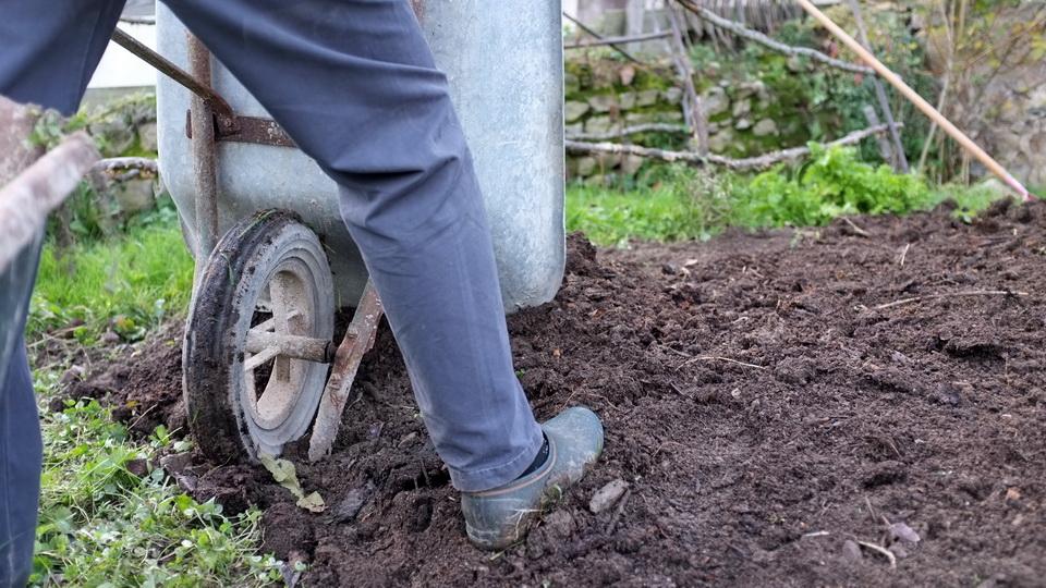 Ce que vous devez savoir pour entretenir un jardin en hiver