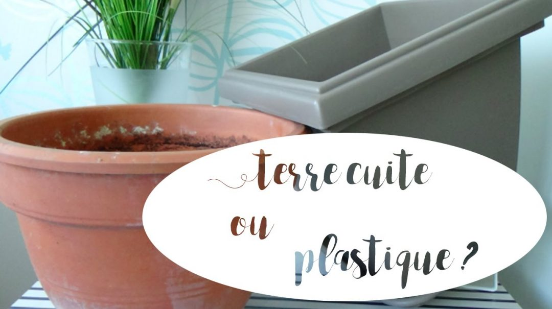 Que choisir entre un pot de terre cuite et un pot en plastique ?